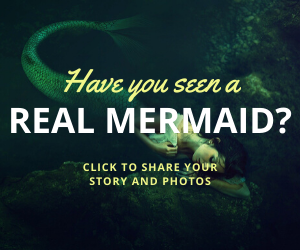 Have you seen a mermaid?